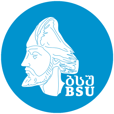 Image BSU